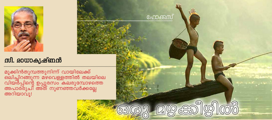 ഒരു മഴക്കീഴില് - സി. രാധാകൃഷ്ണന്